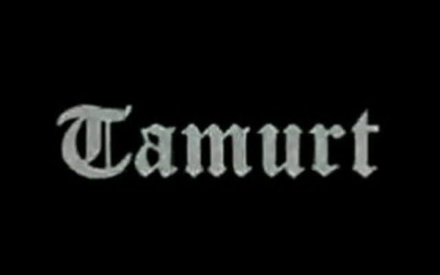 Logo Tamurt info